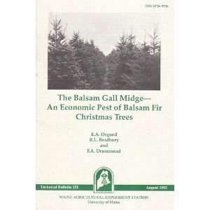 The balsam gall midge An economic pest of balsam fir