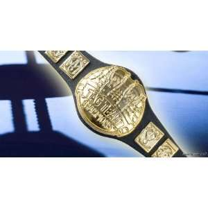 WWE Wrestling TAG TEAM Toy Action Figure BELT: Everything
