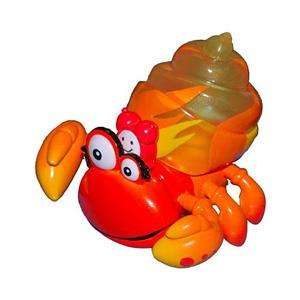 Xia Xia Trinidad Orange Hermit Crab Orange Shell Blue Box