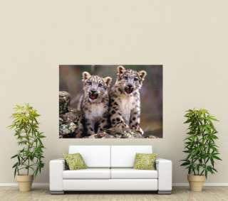 Snow Leopard Cubs Giant Poster Print X980