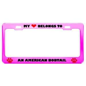 An American Bobtail Cat Pet Pink Metal License Plate Frame