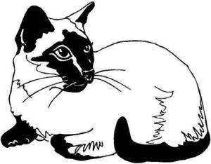 Siamese Cat Vinyl Decal Car Truck Sticker 2