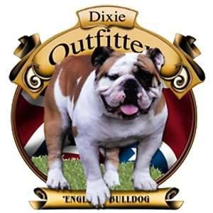 Dixie Rebel Dogs  ENGLISH BULLDOG
