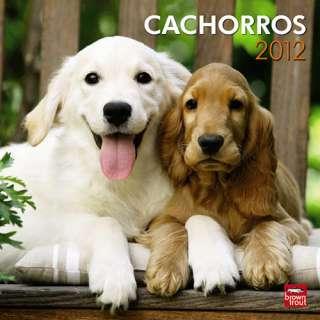 Puppies (Spanish) 2012 Wall Calendar