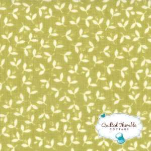 California Girl by Fig Tree and Co   Sprout Sprouts (20183