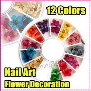 Wheel Dry Flower Nail Art Decorations Acrylic 254 Beauty