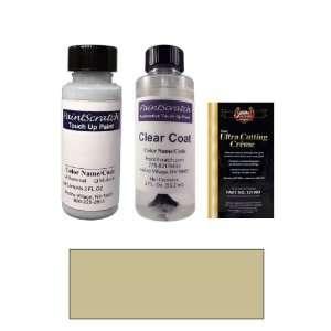 2 Oz. Warm Silver Metallic Paint Bottle Kit for 2001