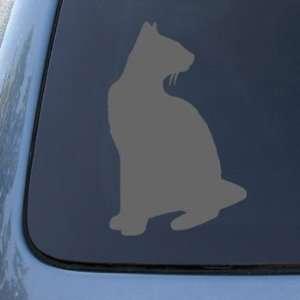 SIAMESE   Cat   Vinyl Car Decal Sticker #1558  Vinyl