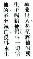JOHN 316 in CHINESE bible verse rubber stamp #11