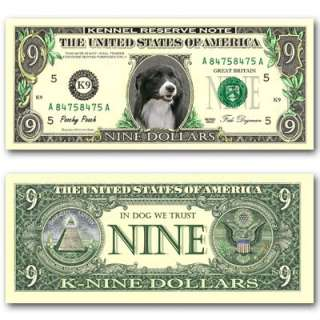 BORDER COLLIE Novelty NINE DOLLAR BILL Dog