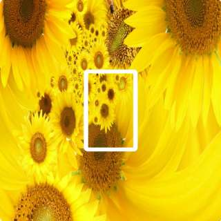 YELLOW SUNFLOWER,FLORAL LIGHT SWITCH COVER,STICKER,SKIN