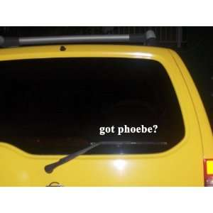 got phoebe? Funny decal sticker Brand New Everything