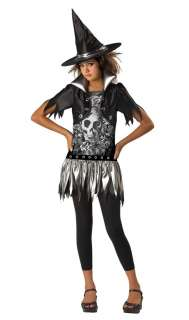 Gothic Witch Costume   Family Friendly Costumes
