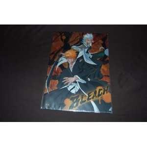 Toshiro And Ichigo Clear File B