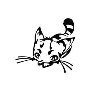 Kitty Learn Hunt   Cartoon Decal Vinyl Car Wall Laptop