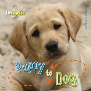 Puppy to Dog (Qed Life Cycles) (9781848355828): Camilla De